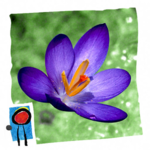 Spring Changes App
