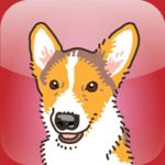 Catch the Dog! App
