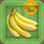 Flashcards for Kids - First Food Words App