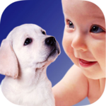 ZOOLA Animals App